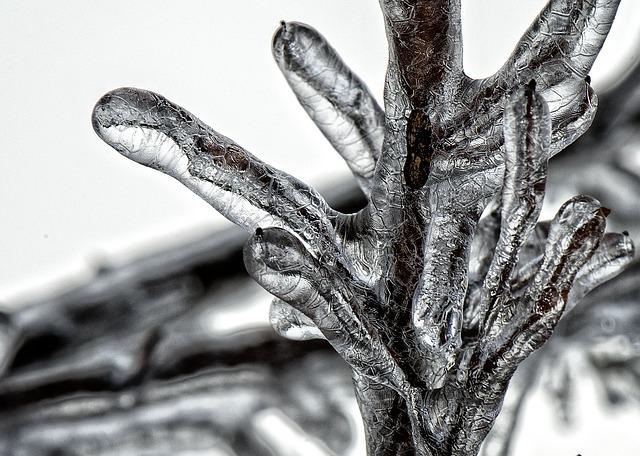 krystalový strom